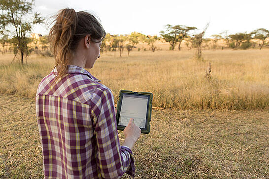 UCSB Doctoral researcher, Lacey Huey holds ipad with Wildnote custom survey form to document data on wildebeests in Tanzania.