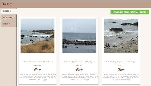 Image of Wildnote photo gallery screenshot showing how the image name automatically changed to the project details after bulk photo download.